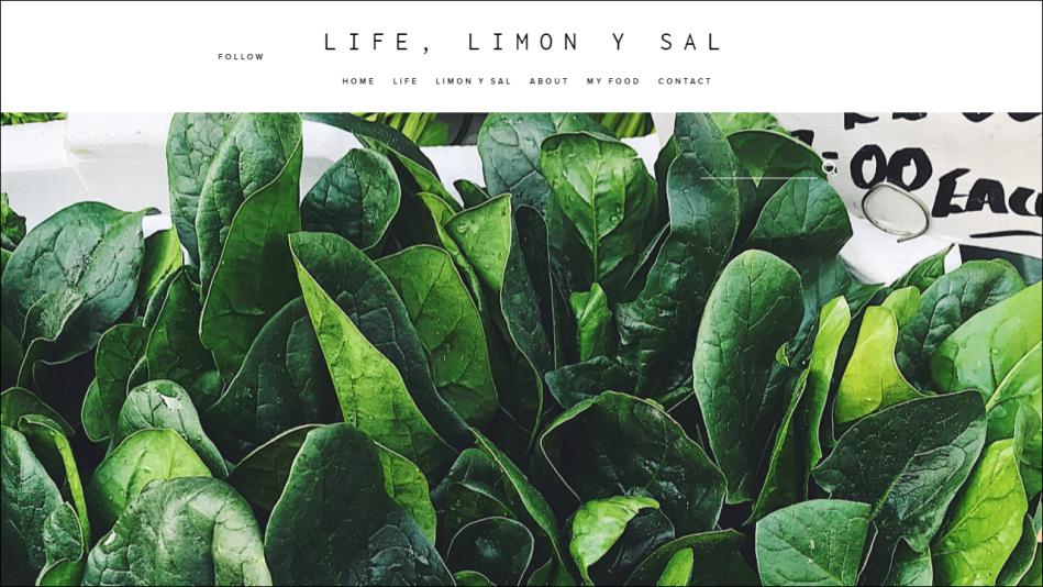 LIFE LIMON Y SAL SITE